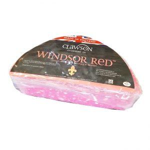 Red Windsor